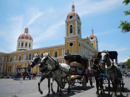 Casa Cubana: city center