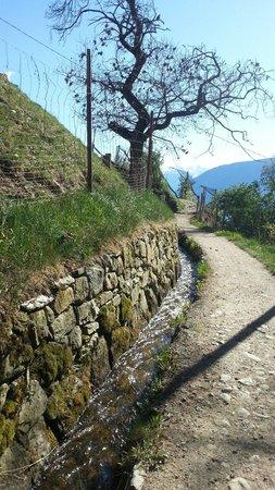 Meraner Waalrunde: I canali d irrigazione