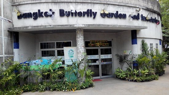 ‪Bangkok Butterfly Garden and Insectarium‬