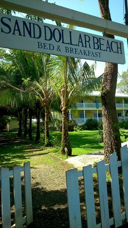 Sand Dollar Beach Bed & Breakfast : Entrance