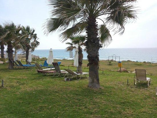 Capital Coast Resort & Spa: Garden