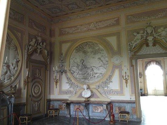 Castello di Racconigi - rosone