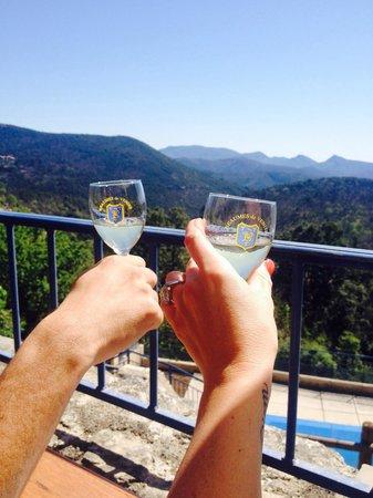 Auberge La Borie : Vue de la terrasse du restaurant