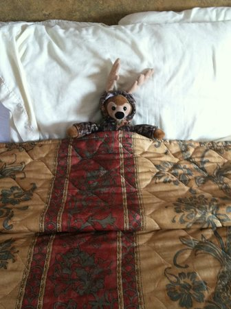 Seahorse Inn Beach Side: Caring and attentive housekeeping staff