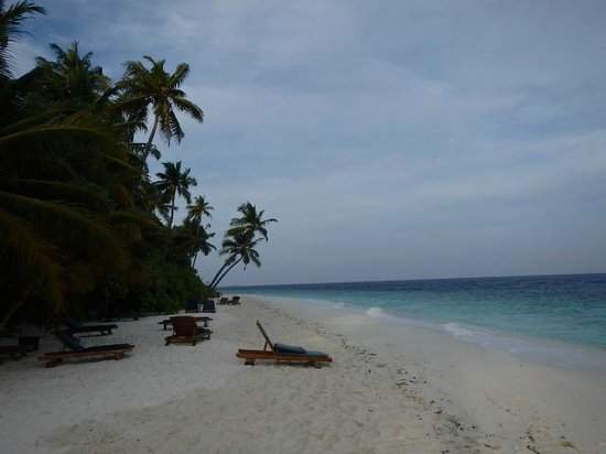 Filitheyo Island Resort: beautiful