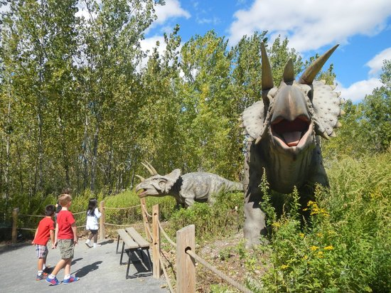 Field Station: Dinosaurs: Creative display