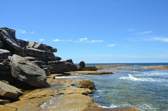 Bondi to Coogee Beach Coastal Walk (7)
