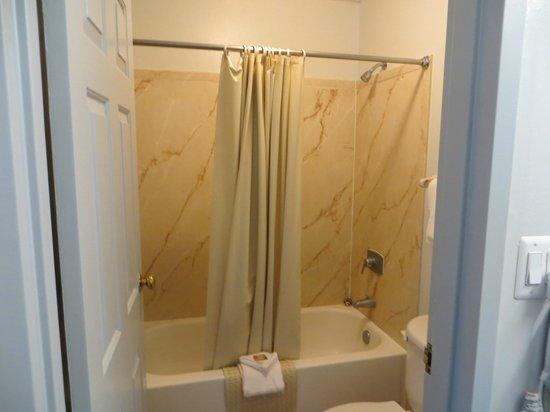 Oglethorpe Inn & Suites: bagno
