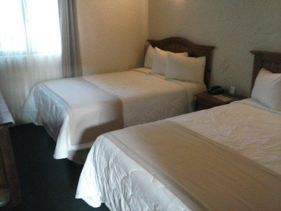 Hotel Guanajuato : Habitación Estándar con 2 camas