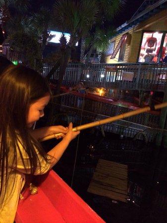 Fudpucker's Beachside Bar & Grill : Feeding the gators