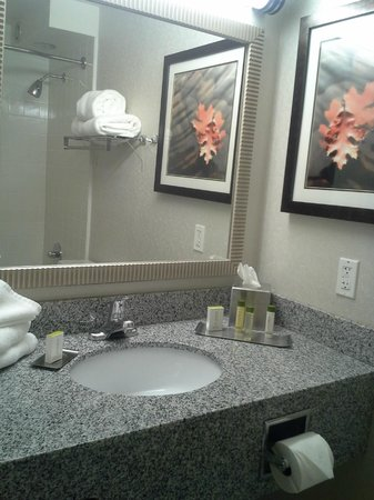 President Abraham Lincoln Springfield - a DoubleTree by Hilton Hotel: Sink & Mirror