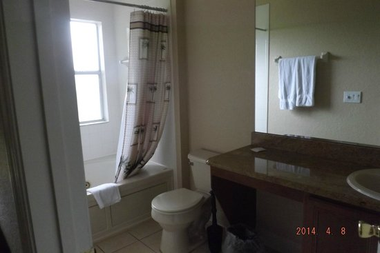 Regal Palms Resort & Spa: another bathrom.