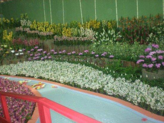 Festa de Flores e Morangos de Atibaia: Pavilhão Festa das Flores