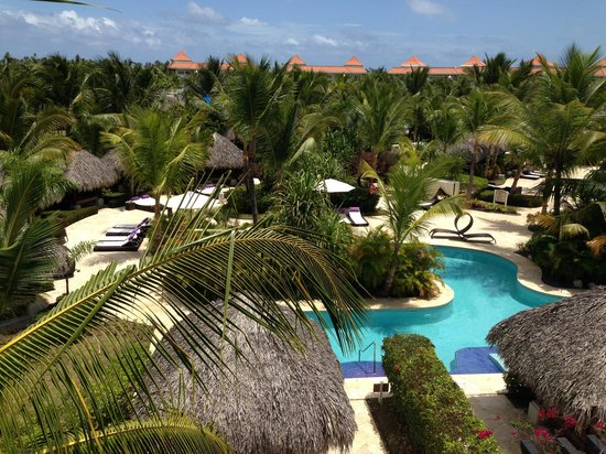 The Reserve at Paradisus Palma Real: View from room 5321