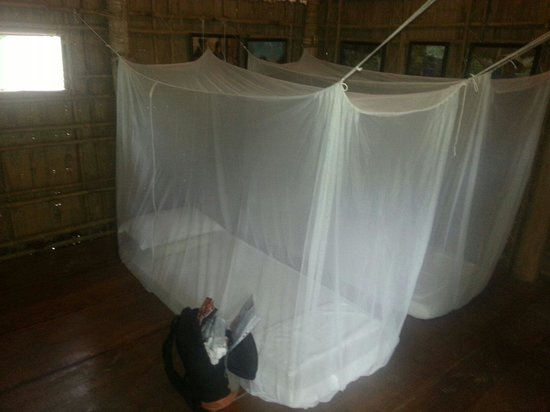 Ta Lai Longhouse : Comfortable mattresses with protective netting