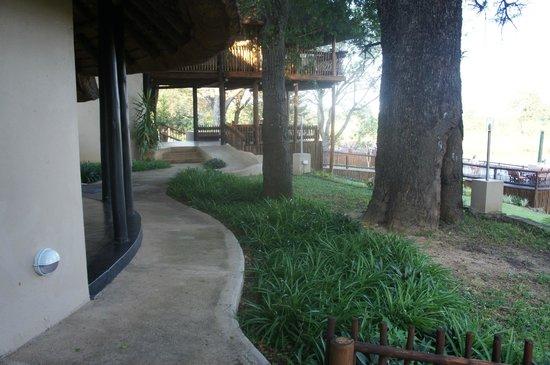 Sabie River Bush Lodge: Outside of room