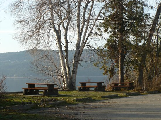 Shuswap Lake Provincial Park : around the boat dock area
