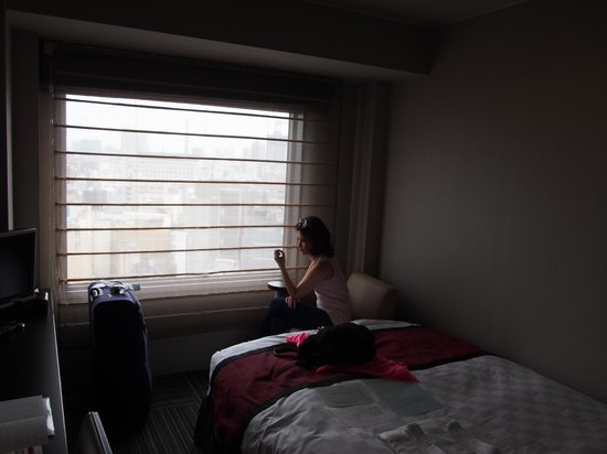 Shinjuku Prince Hotel: View of our room
