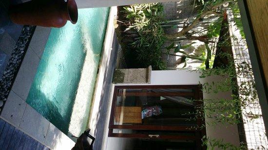 The Lokha Umalas Villas & Spa: Private Pool