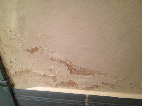 Hotel The Volcan : Paint peeling off walls in bedroom