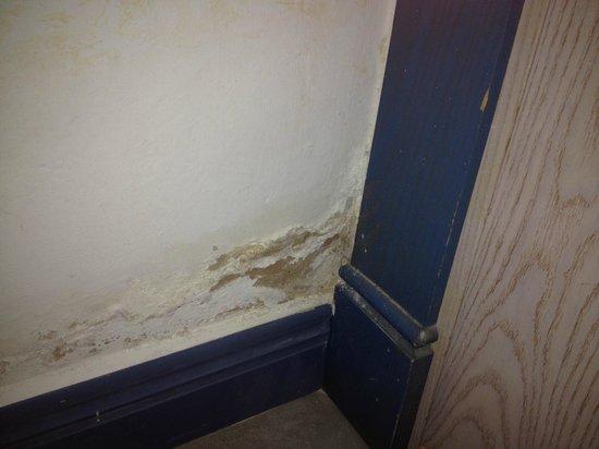 Hotel The Volcan : Paint peeling of walls in bedroom