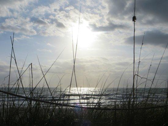 Sea Scape Motel - Oceanfront Getaway : alba dalla suite