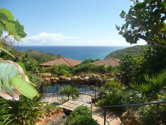Royal Isabela : Casita roofs is all you see they are so private it is so well thought out