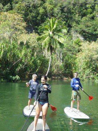 Royal Isabela : try it anyone can do paddleboarding