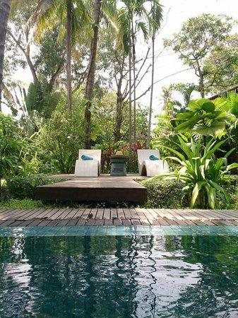 Maison Polanka : loungers by the pool