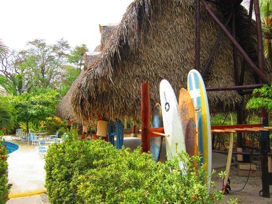 Hotel Casa Romantica: surf board rentals