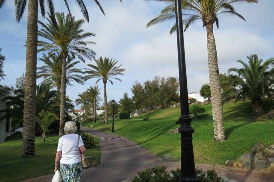 TUI MAGIC LIFE Fuerteventura: Manicured lawns, swaying palms, smooth paths
