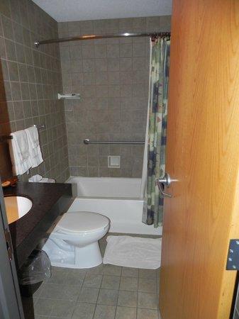 Turkey Run Inn: Bathroom