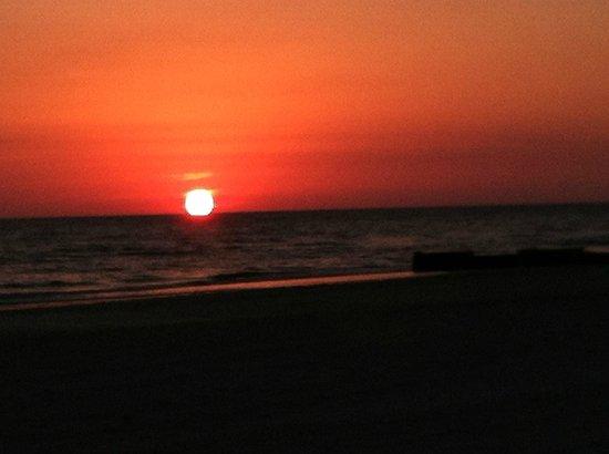 Shoreline Island Resort: Gorgeous sunset
