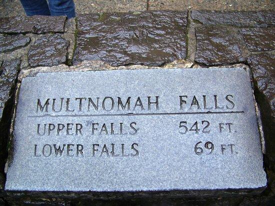 Cataratas Multnomah: Falls Height