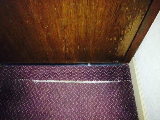 Ramada Morgantown Hotel & Conference Center: Rug and door inside room