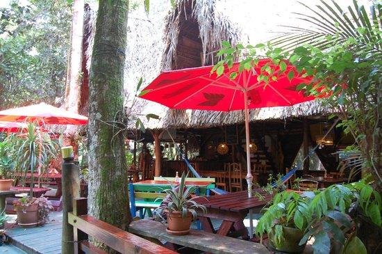 Hotel Casa Perico: Common Area
