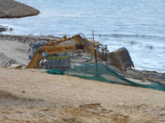 Holiday Inn Resort Dead Sea: diggers on beach