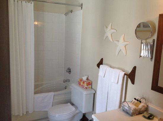 Auberge Nuits St-Georges: Salle de bain