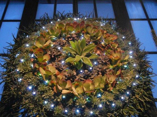 Longwood Gardens : Wreath