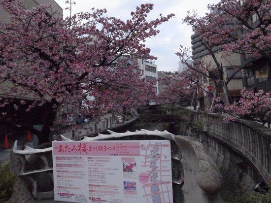 Itokawa Path : 記念撮影ポイントもあります