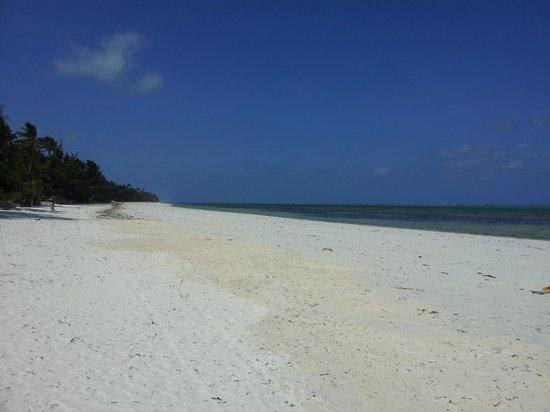 Twisted Palms Lodge & Restaurant : beach