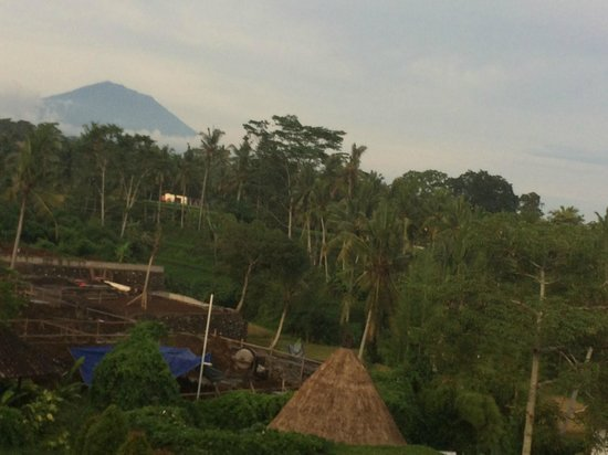 Ubud Green: View from roof of restaurant