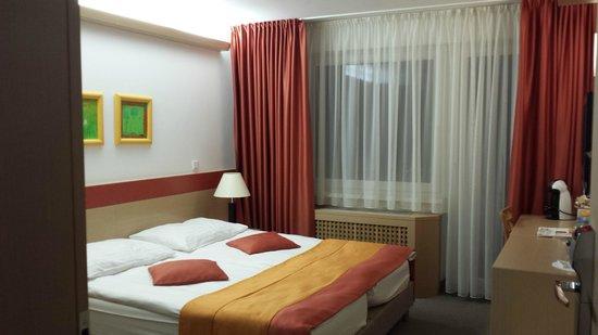 Savica Hotel: Savica room