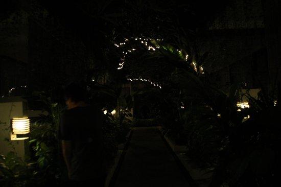 Arana Suite Hotel: Gardens.