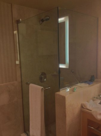 Sofitel Chicago Magnificent Mile: walk-in shower