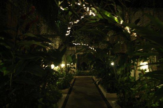 Arana Suite Hotel: Pretty Gardens
