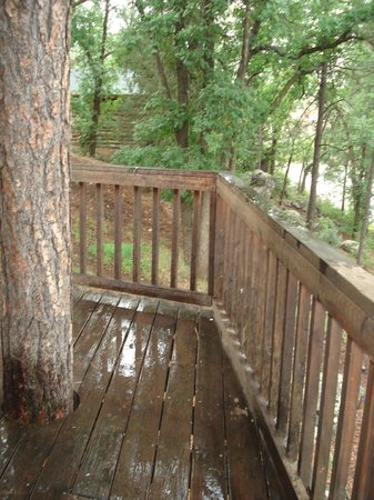 Lake of the Woods Resort : Lovley deck & tree trunk growing up thru cabin #4 deck