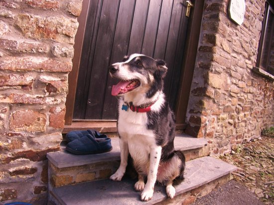Country Ways Holiday Cottages: the warren