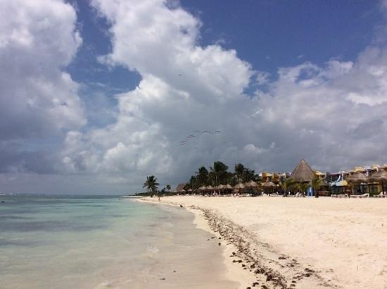 PavoReal Beach Resort Tulum : spiaggia