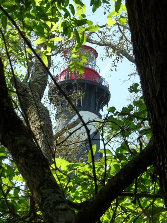 St. Augustine Lighthouse & Maritime Museum: Lighthouse seen from a path in the woods